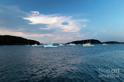 Photograph - Bar Harbor Lobster Boats by Elizabeth Dow