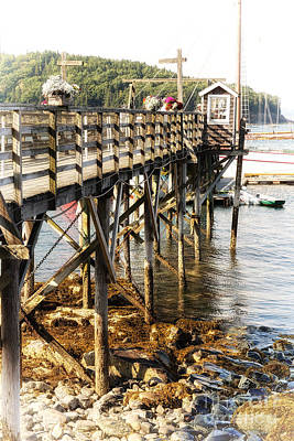 Water Filter Photograph - Bar Harbor Pier by Jane Rix