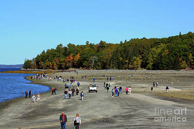 Photograph - Bar Island Sandbar  by Patti Whitten