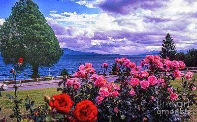 Photograph - Bara Loche Flowers by Rick Bragan