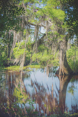Photograph - Barataria Reflections by Ray Devlin