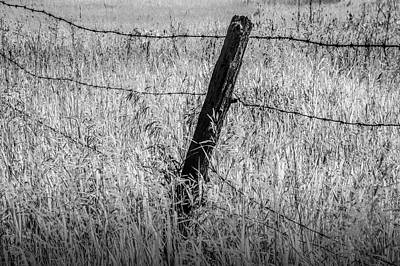 Photograph - Barb Wire Fence In Infrared Blackand White by Randall Nyhof
