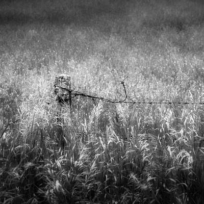 Photograph - Barb Wire Fence Square by Bill Wakeley