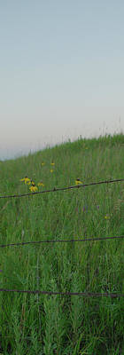 Photograph - Barb Wire Prairie by Troy Stapek