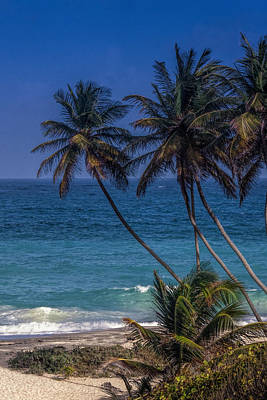 Barbados Photograph - Barbados Beach by Andrew Soundarajan