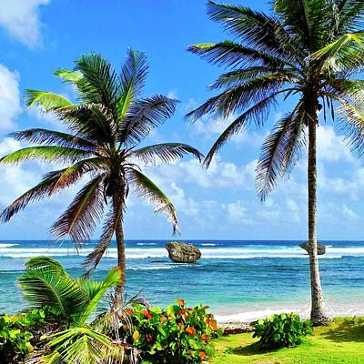 Photograph - Barbados Coastal Landscape by Kirsten Giving