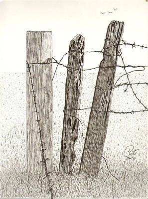 barbed wire fence drawing. Barb Wire Fence Drawing - Barbed By Pat Price I