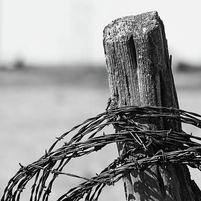 Photograph - Barbed Post by Nathan Hillis