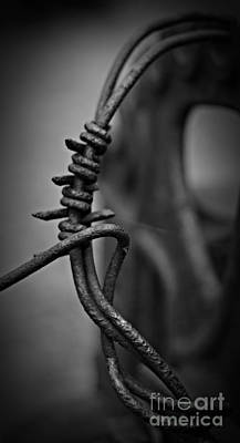 Barbed Wire Bw Art Print