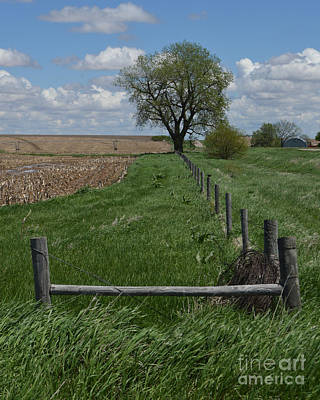 Photograph - Barbed Wire Fence Line by Renie Rutten