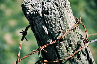 Barbed Wire Art Print by JAMART Photography