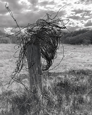 Photograph - Barbed Wire by Mark Mille