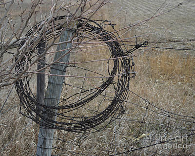 Photograph - Barbed Wire by Renie Rutten