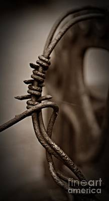 Barbed Wire Sepia Art Print