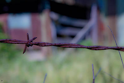 Barbwire Original by Jason Blalock