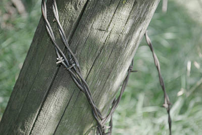 Photograph - Barbwire Shadow by Troy Stapek