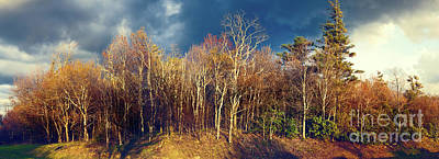 Photograph - Bare Tree Sunset Panorama Blue Ridge Parkway by Dan Carmichael