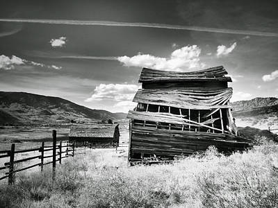 Photograph - Barely Standing by Tara Turner