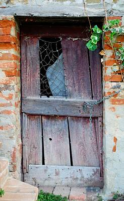 Photograph - Barely There Door by Dorothy Berry-Lound