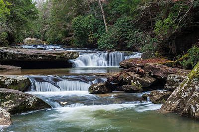 Photograph - Bark Camp Creek Cascades by Barry Fowler