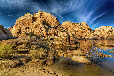 Photograph - Barker Dam Reservoir Joshua Tree 7r2_dsc3862_17-01-19 by Greg Kluempers