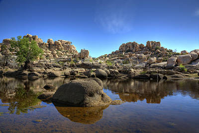 Joshua Tree Np Photograph - Barker's Dam Reservoir by Peter Tellone