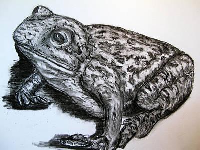 Hong Kong Drawing - Barking Frog From Guangzhou by Joy Neasley