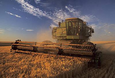 Photograph - Barley Harvest II by Doug Davidson