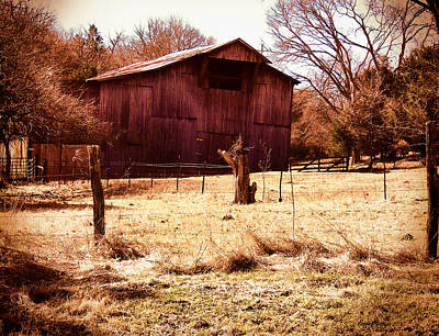 Photograph - Barn 166 by Ericamaxine Price