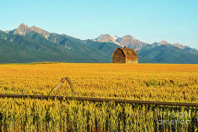 Photograph - Barn And Bent Wheel by David Arment