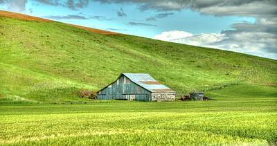 Photograph - Barn And Field Of Green by Jerry Sodorff