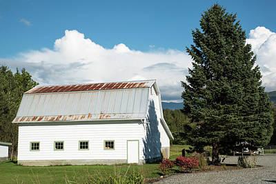 Photograph - Barn And Fir Tree by Tom Cochran