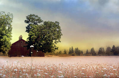 Photograph - Barn And Lace by Rebecca Cozart