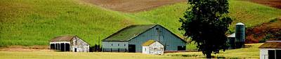 Photograph - Barn And Shed P by Jerry Sodorff