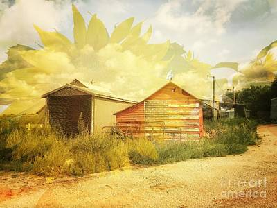 Photograph - Barn And Sunflower Double Exposure by Iryna Liveoak