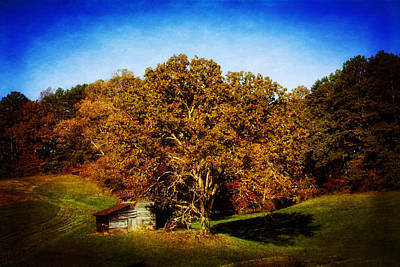 Barn Photograph - Barn And Tree by Greg Mimbs