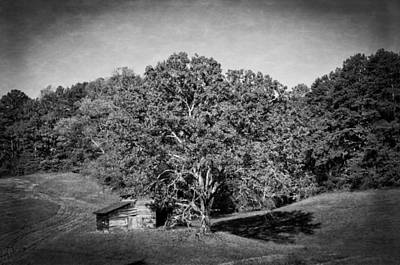 Barn Photograph - Barn And Tree In Black And White by Greg Mimbs