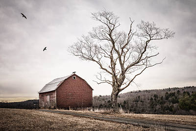 Old Country Roads Photograph - barn and tree - New York State by Gary Heller