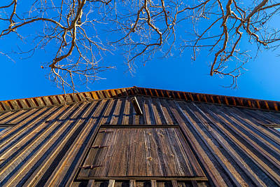 Photograph - Barn And Trees by Derek Dean
