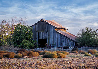 Photograph - Barn And Tumbleweeds by Gene Parks