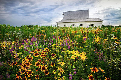 Photograph - Barn And Wildflowers by Ron Pate