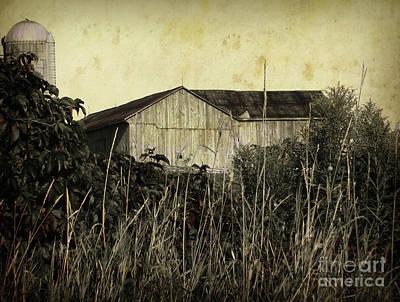 Photograph - Barn Beyond The Grass by Hal Halli
