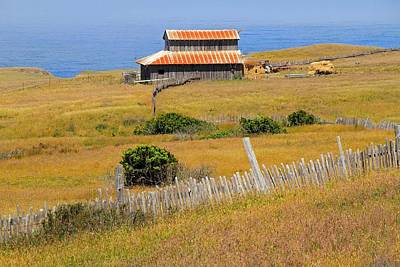 Photograph - Barn By The Sea by Donna Kennedy