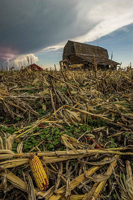 Photograph - Barn Corn by Aaron J Groen