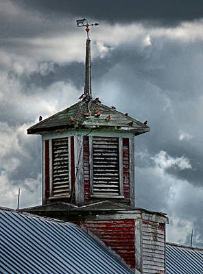 Photograph - Barn Cupola With Birds In Vermont by Nancy Griswold