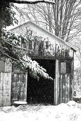 Photograph - Barn Door Darkly by Jesse Ciazza