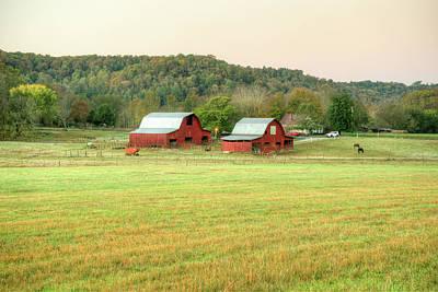 Photograph - Barn Duo Pastoral Scene by Douglas Barnett