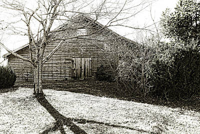 Photograph - Barn Find by Sharon Popek