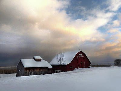 Photograph - Barn In Solitude by Nancy Griswold