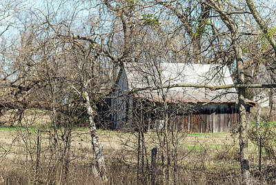 Photograph - Barn In The Brush by Lisa Moore